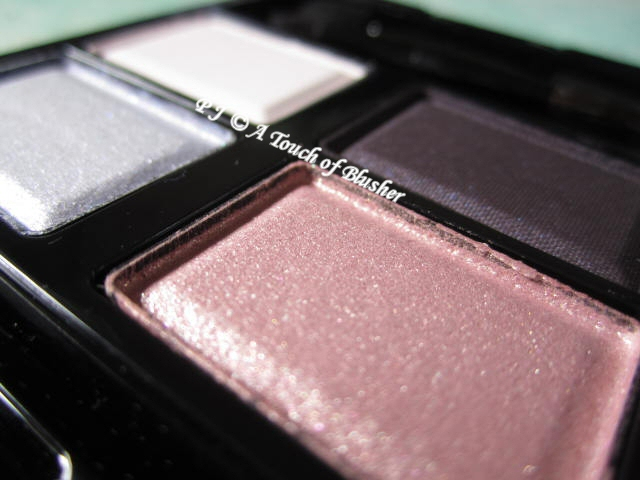 SUQQU Blend Color Eyeshadow 08 Mizuaoi Fall 2011 Makeup 2