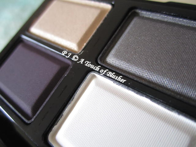 SUQQU Blend Color Eyeshadow 06 Ginbudou Fall 2010 Makeup 2