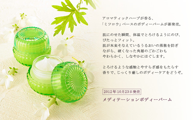 Ayura Holiday 2012 Makeup Fragrance Bodycare 3