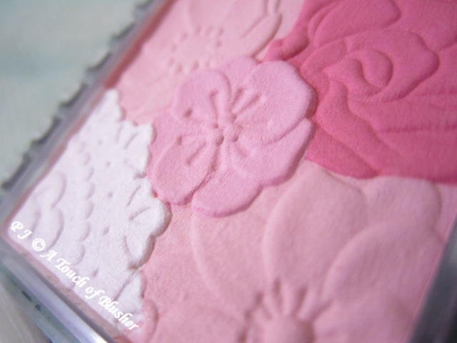 Canmake Mat Fleur Cheeks 02 Mat Girlie Rose Fall 2014 Makeup 2